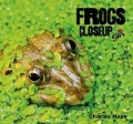 Close up: Frogs